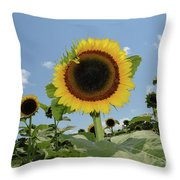 Summer Begin Throw Pillow