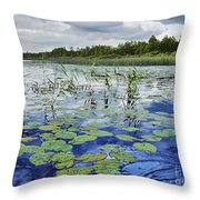 Summer Blue  Lake Under Clody Grey Sky With Forest On Coast Throw Pillow