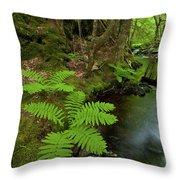 Summer Brook Throw Pillow