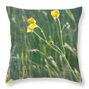 Summer Buttercups Throw Pillow