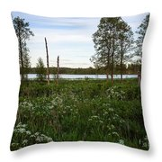 Summer By The Lake Enajarvi Throw Pillow