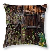 Summer Cabin Throw Pillow