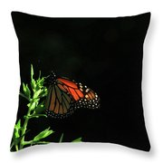 Summer Capture Throw Pillow