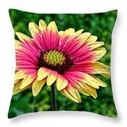 Summer Color Throw Pillow
