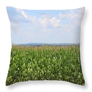 Summer Corn And Blue Skies In Maine  Throw Pillow