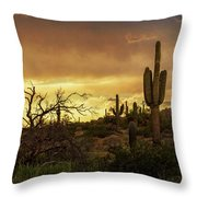 Summer Desert Skies  Throw Pillow