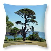 Summer Dunmore East Throw Pillow