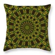 10696 Summer Fire Mask 54 Kaleidoscope 1 Throw Pillow