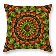 10698 Summer Fire Mask 54 Kaleidoscope 3 Throw Pillow