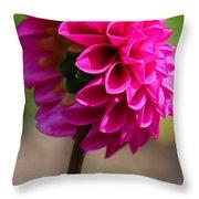 Summer Flambe Throw Pillow