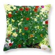 Summer Flowers 10 Throw Pillow