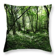 Summer Forest On A Sunny Day Throw Pillow
