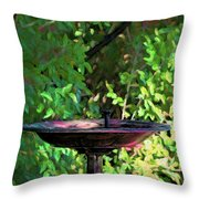 Summer Fountain Impasto Throw Pillow