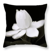 Summer Fragrance Throw Pillow