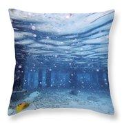 Summer Fun In Maldives Throw Pillow