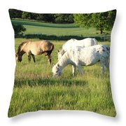 Summer Grazing Throw Pillow