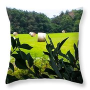 Summer Hay Throw Pillow