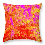Summer Heat Throw Pillow by Eikoni Images
