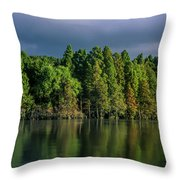 Summer Highlights Throw Pillow
