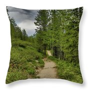 Summer Hike And Storm Clouds Throw Pillow