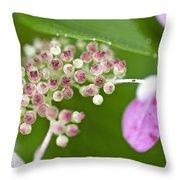 Summer Hydrangea 3 Throw Pillow