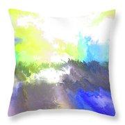 Summer IIi Throw Pillow