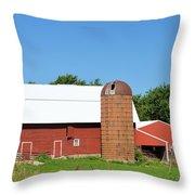 Summer In Iowa Throw Pillow