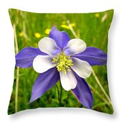 Summer In The Rockies Throw Pillow