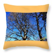 Summer In United States Throw Pillow