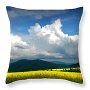 Summer Is Coming Soon Throw Pillow