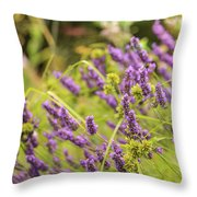 Summer Lavender In Lush Green Fields Throw Pillow