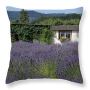 Summer Lavender Throw Pillow
