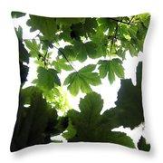 Summer Xxii Throw Pillow