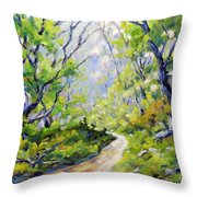 Summer Lights Throw Pillow