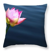 Summer Lily Throw Pillow