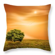 Summer Throw Pillow by Lourry Legarde