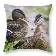Summer Mallard Couple Throw Pillow