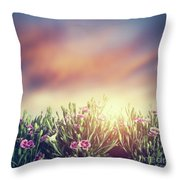 Summer Meadow Flowers In Grass At Sunset. Vintage Throw Pillow