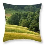 Summer Morning On The Farm Throw Pillow