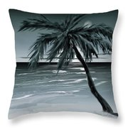 Summer Night In Florida Throw Pillow