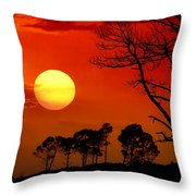 Summer Nights Throw Pillow