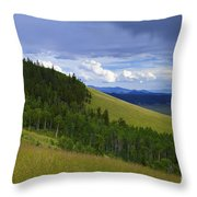 Summer On Kenosha Pass Throw Pillow