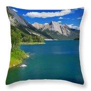 Summer On Medicine Lake Throw Pillow