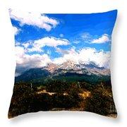 Summer On Mt. Shasta Throw Pillow