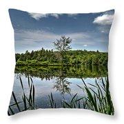 Summer On Waukeena Lake Throw Pillow