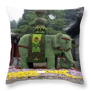 Summer Palace Elephant Throw Pillow