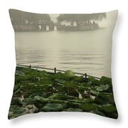 Summer Palace Serenity Throw Pillow