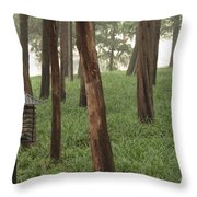 Summer Palace Trees And Lamp Throw Pillow