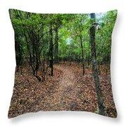 Summer Path At Shiloh Throw Pillow