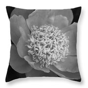 Summer Peony Throw Pillow